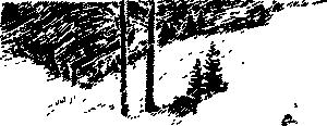 free vector Snowy Trees clip art