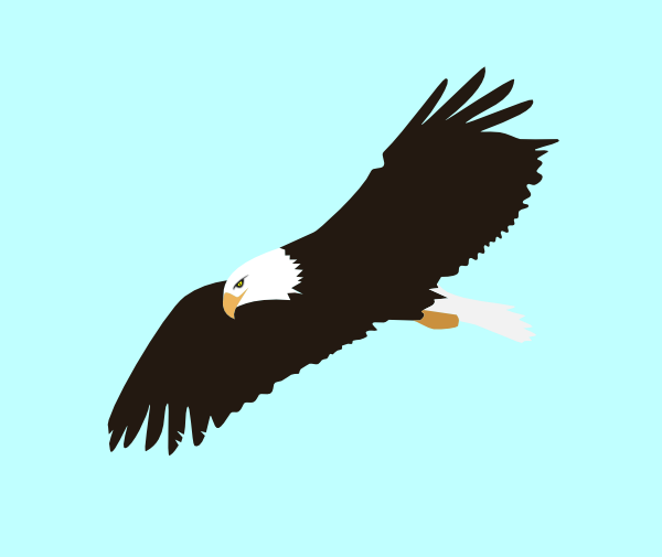 free vector Soaring Eagle clip art