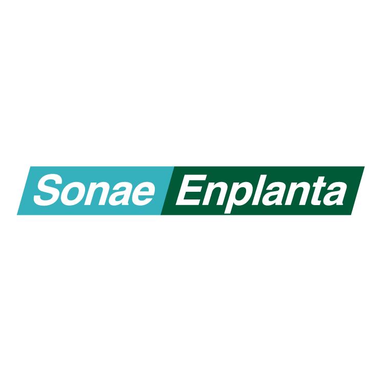 free vector Sonae enplanta 0