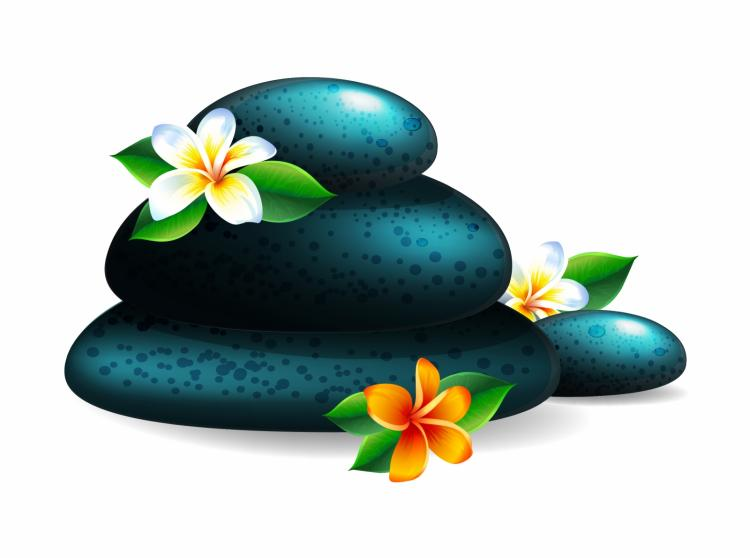 free vector Spa stone and flower
