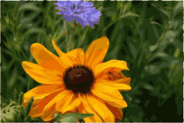free vector Spider Flower clip art