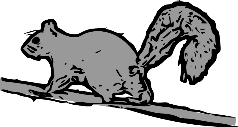 free vector Squirrel