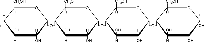 free vector Starch
