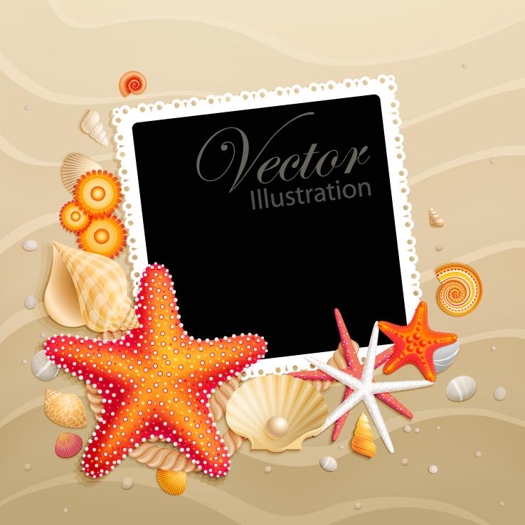 free vector Starfish shell 05 vector