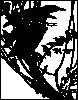 free vector Starlings clip art