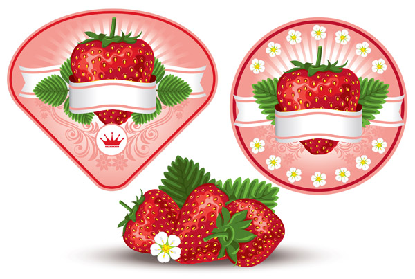 free vector Strawberry theme vector