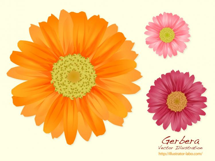 Summer Flowers Free Vector 4vector