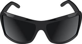 free vector Summer must sunglasses vector