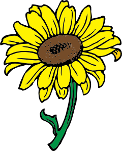 free vector Sunflower clip art