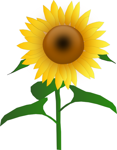 ... -vector-sunflower-jh-clip-art_107617_Sunflower_Jh_clip_art_hight.png
