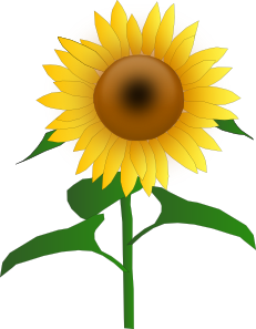 free vector Sunflower Jh clip art