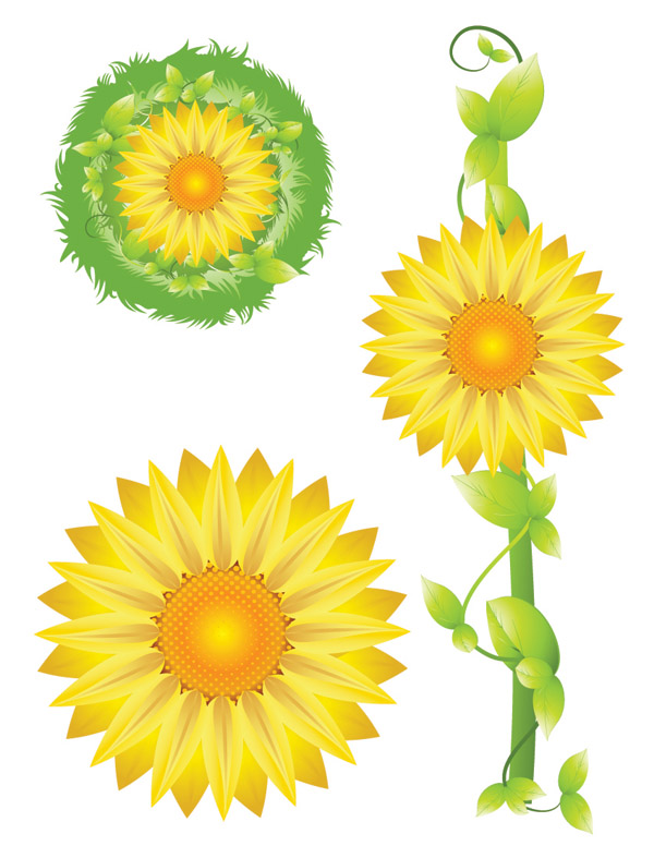 free vector Sunflower vector