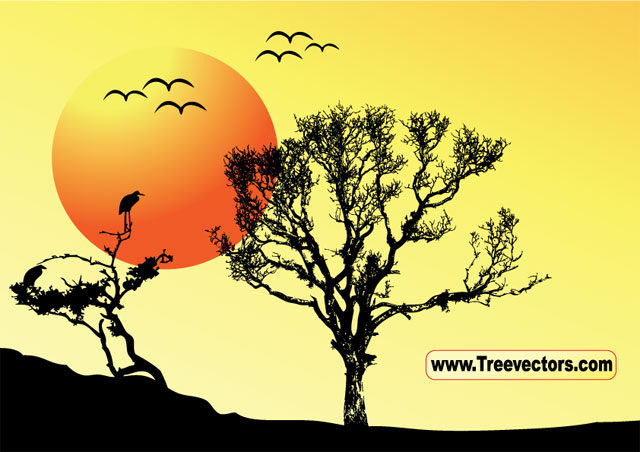 free vector Sunset Vector Tree Background