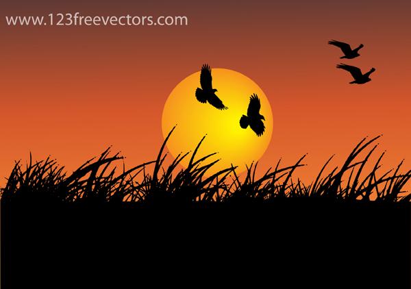 free vector Sunshine Vector