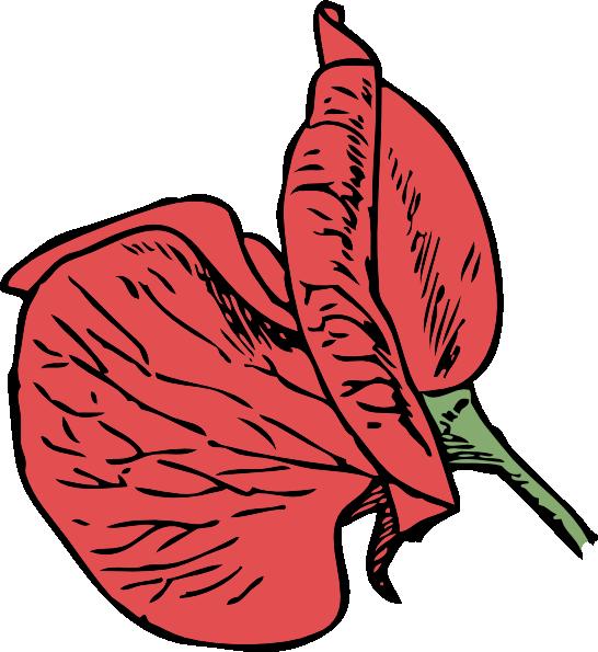 free vector Sweet Pea clip art