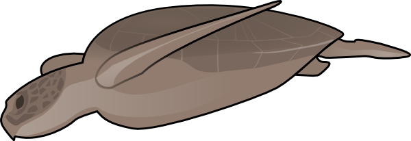 free vector Swimming Turtle clip art