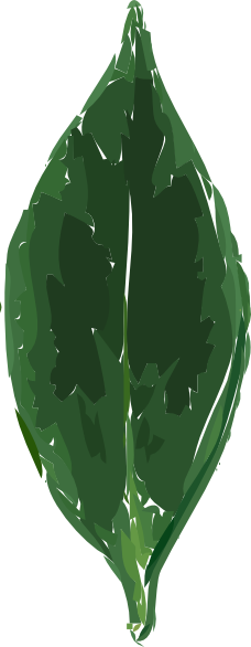 free vector Tea Leaf clip art
