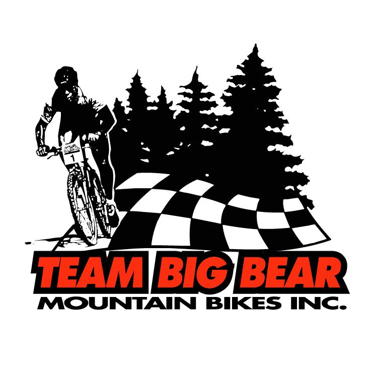 free vector Team big bear