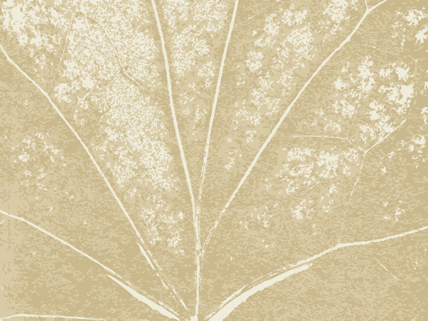 texture and background vector free vector    4vector