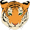 free vector Tiger clip art 119309
