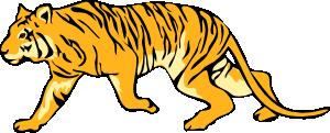 free vector Tigre05 clip art