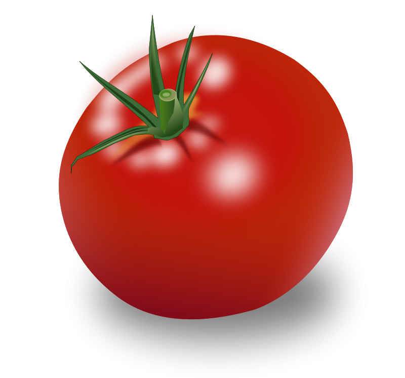 free vector Tomate
