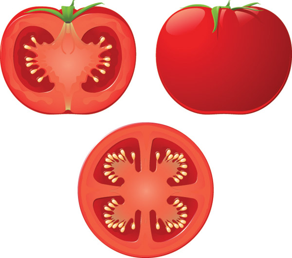 Tomatoes 5283 Free Eps Download 4 Vector