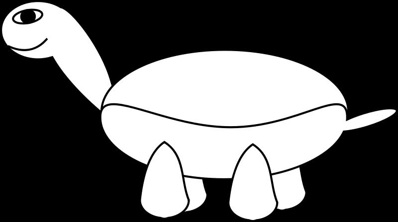 free vector TortoiseStage3
