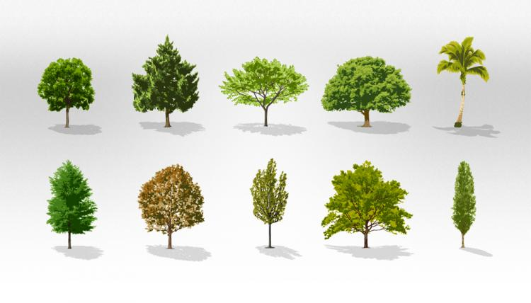 free vector Trees Vector Collection Pack