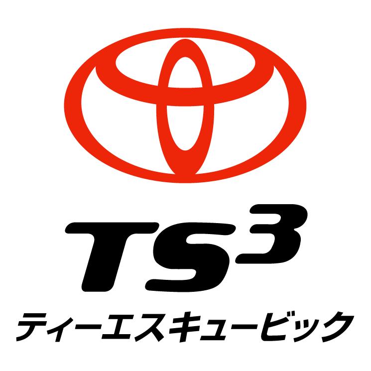 free vector Ts3 card
