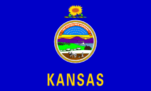 free vector Us Kansas Flag clip art