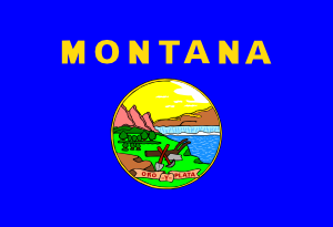 free vector Us Montana Flag clip art