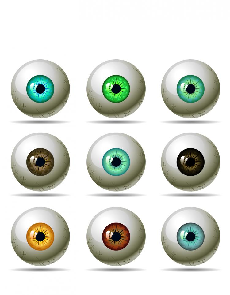 free vector Uspupil of the eye vector