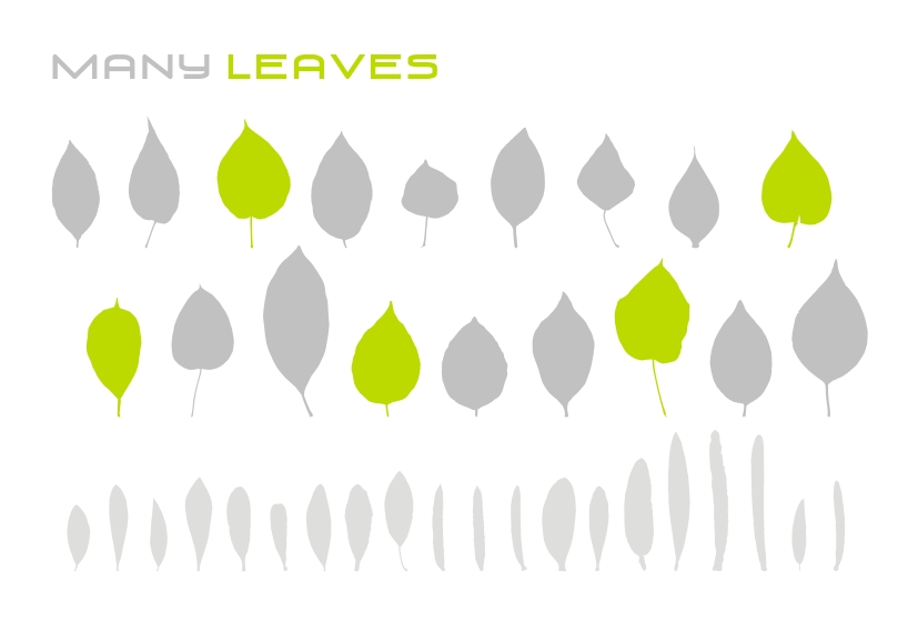 free vector Various leaves vector