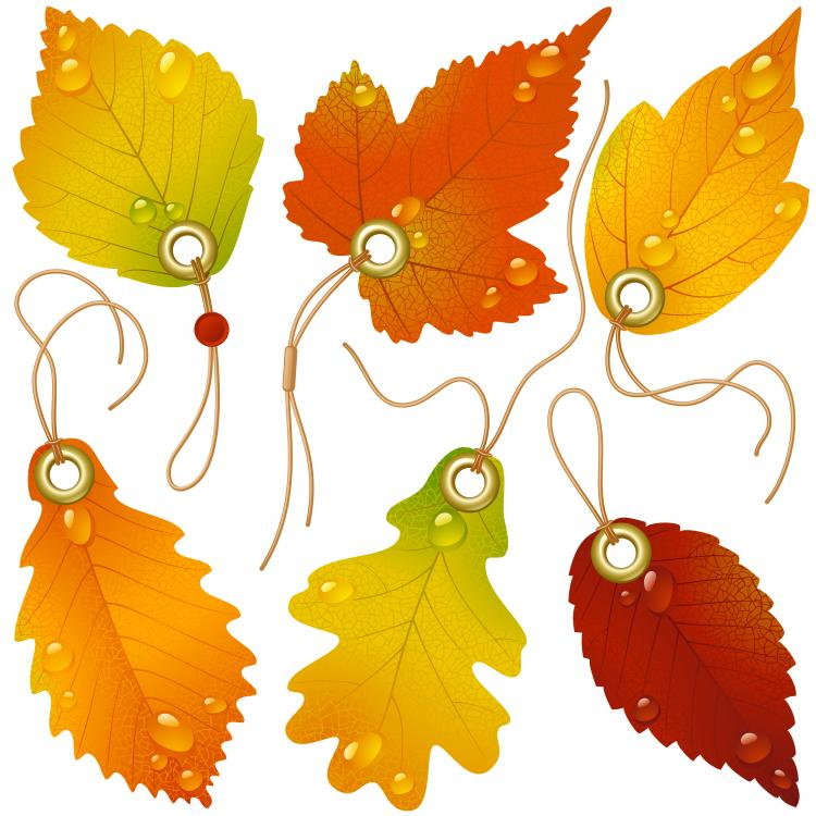 free vector Vector beautiful maple leaf bookmark
