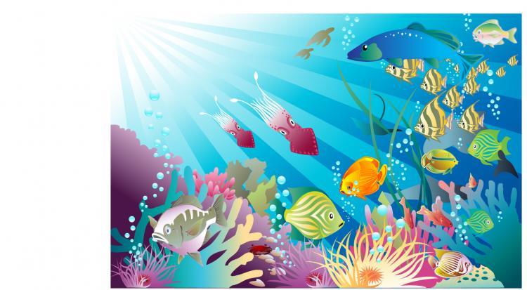 free vector Vector beautiful underwater world
