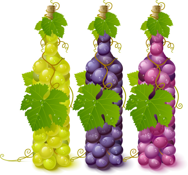 free vector Vector bottle filled with grapes