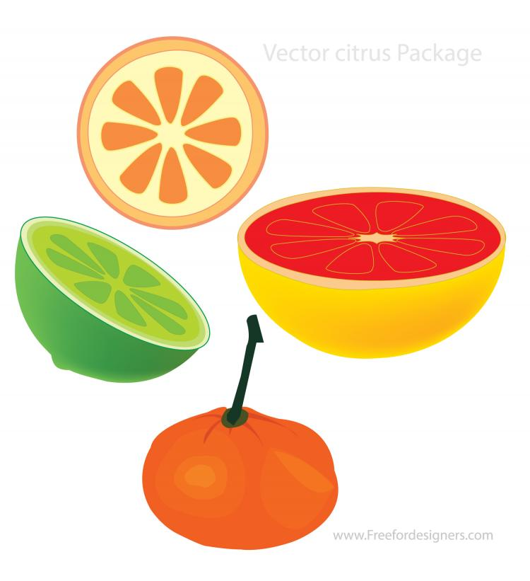 free vector Vector Citrus Package