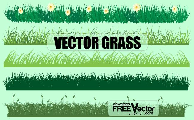 Vector Grass Free Vector / 4Vector