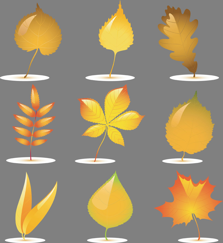 free vector Vector leaves of trees