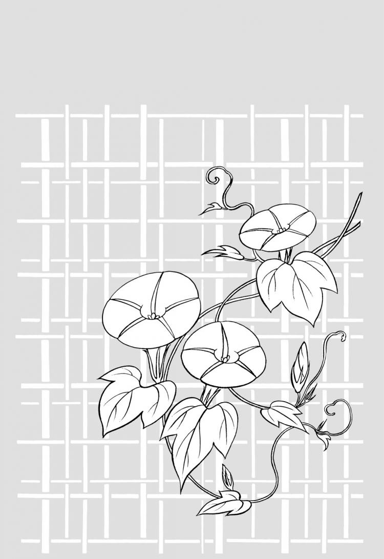 free vector Vector line drawing of flowers-26(Morning glory, lattice background)