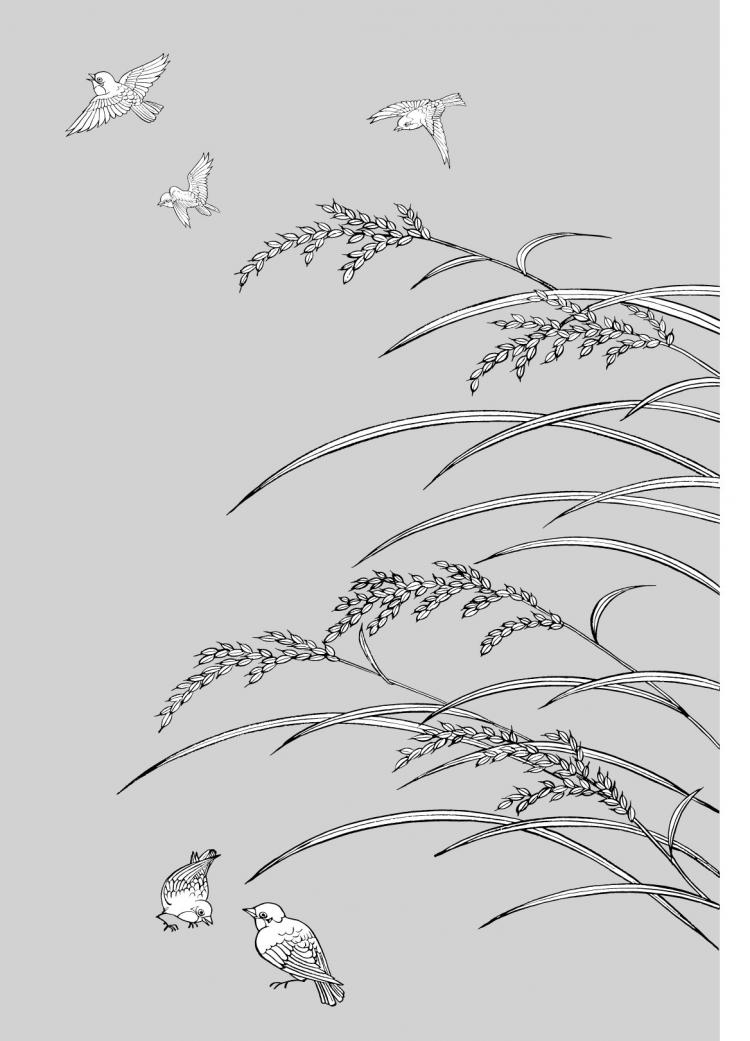 free vector Vector line drawing of flowers-33(Rice, birds)