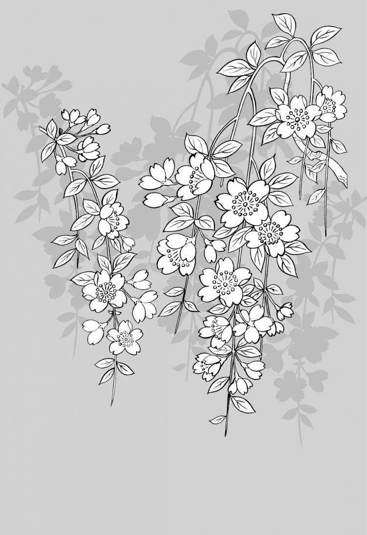free vector Vector line drawing of flowers-43(Sakura)