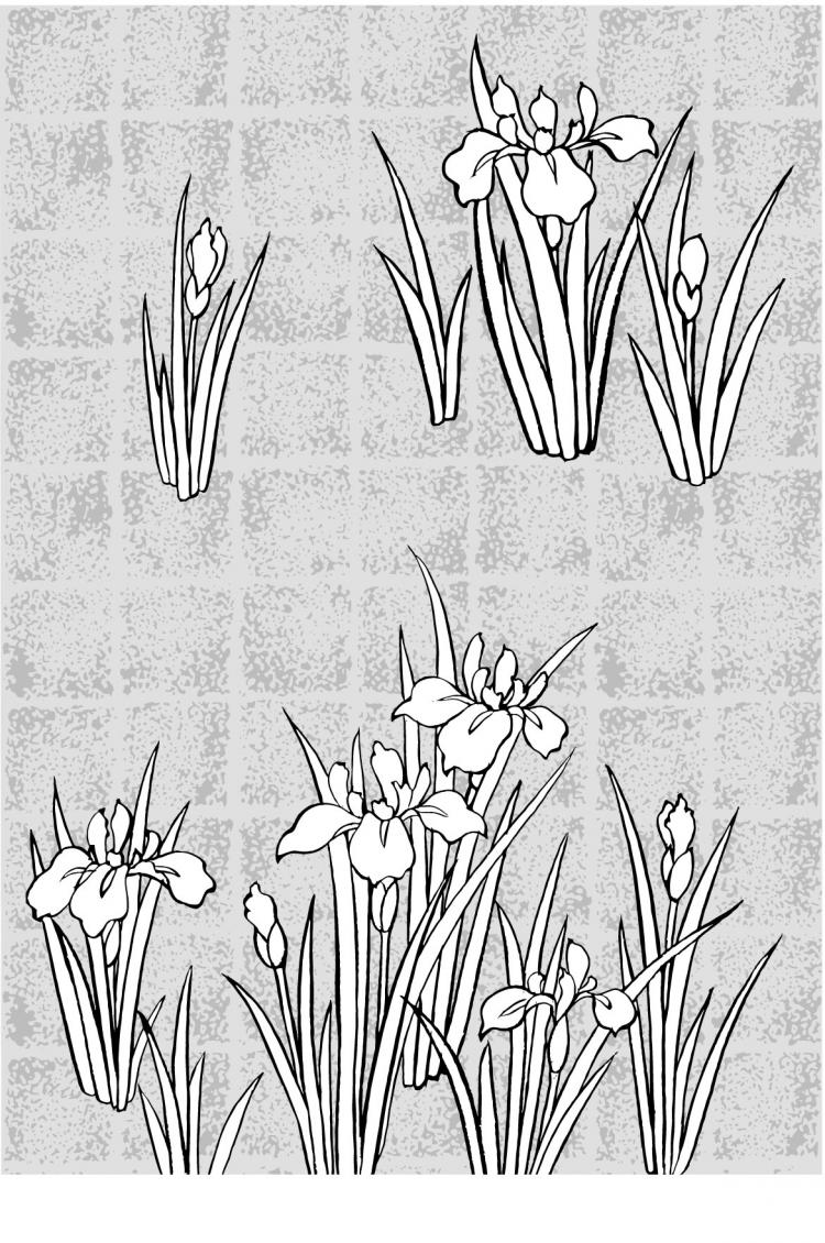 free vector Vector line drawing of flowers-44(Rattan, gilded lattice)