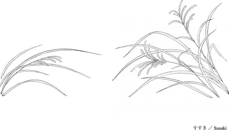 Line Drawing Grass : Vector line drawing of flowers and grass free
