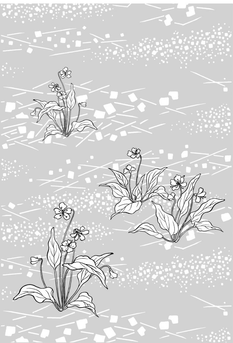 Line Drawing Of Flowers 48 Flowers And Grass 93560 Free