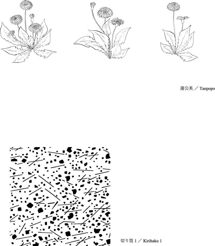 Dandelion Flower Line Drawing : Vector line drawing of flowers dandelion lily free