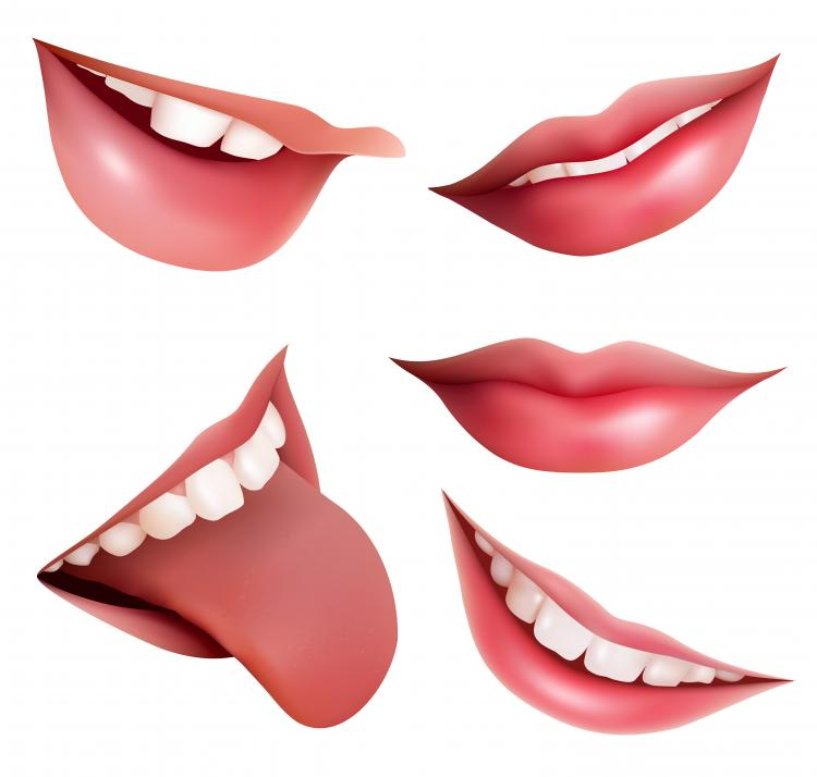 free vector Vector mouth