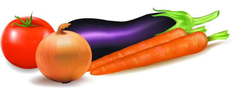 free vector Vector of common vegetables
