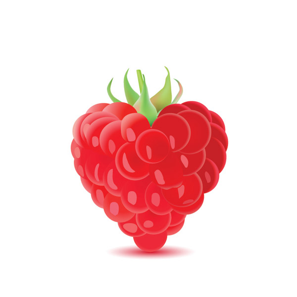 free vector Vector romantic berries